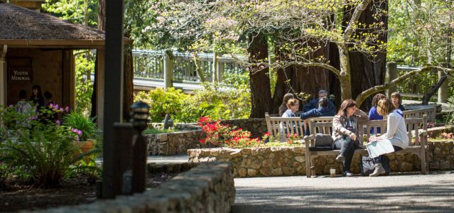 people visiting outside at mount hermon