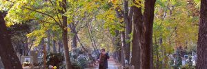 lady walking in fall leaves