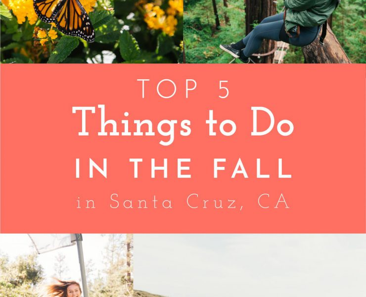 top-5-things-to-do-in-the-fall-in-the-santa-cruz