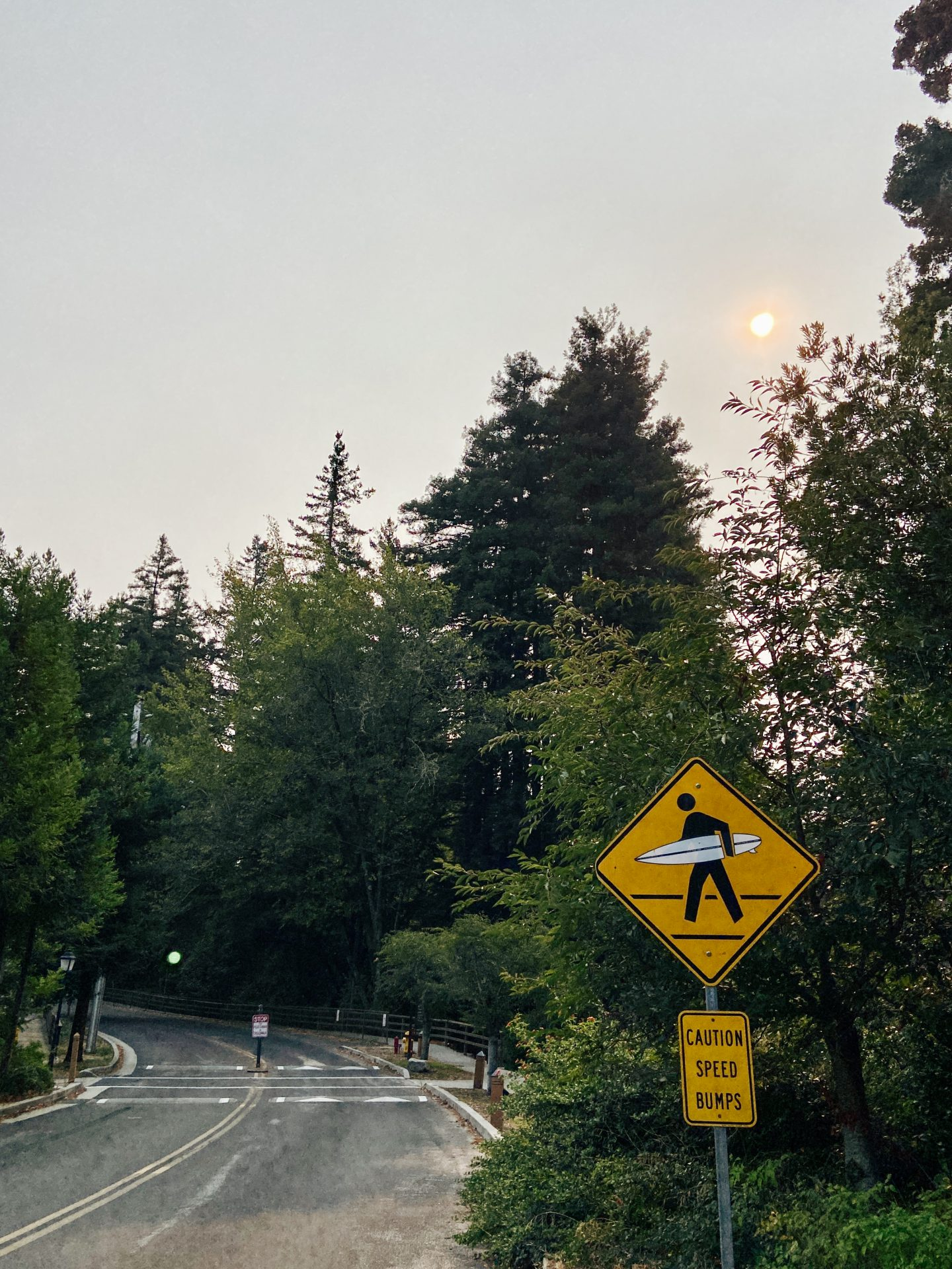 Mount Hermon August 2020 Fire Update