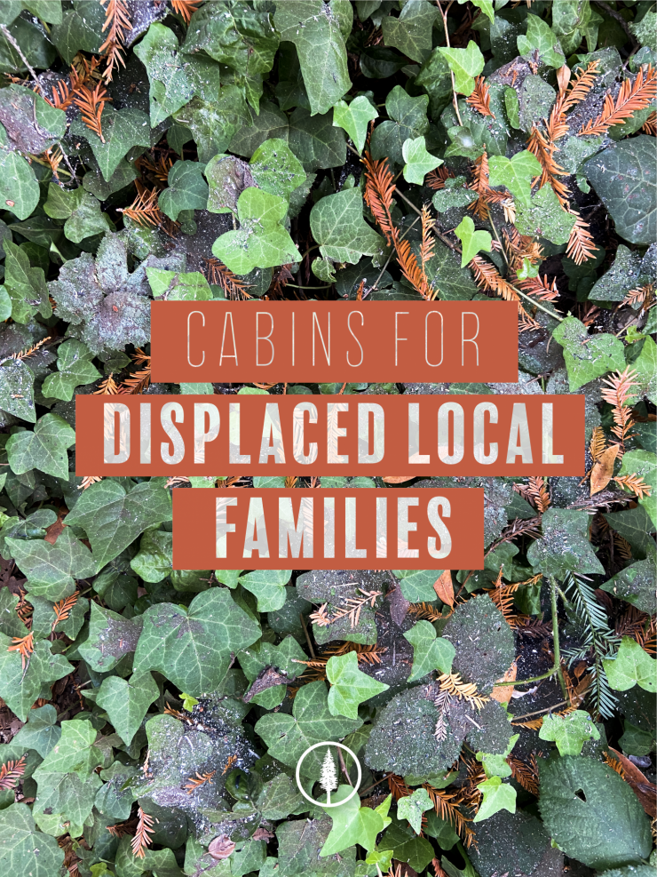 Cabins for Displaced Local Families